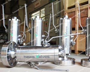 hawa-valves-single-double-block02