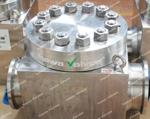 hawa-valves-api-6a-check-valves-swingliftdual-platenon-slam-axialtilting-disc1